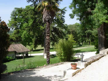 the wooded park-garden as viewed from the gite